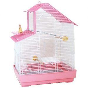 4963067043556-pink